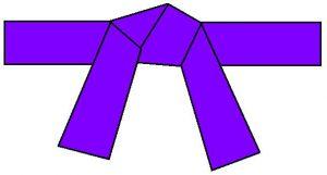 ceinture-violette